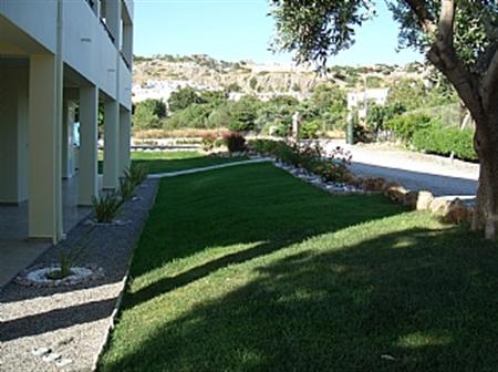 Sifis gardens