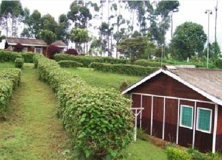 Muchiri's Resort